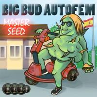 Master-Seed Auto Big Bud фем.
