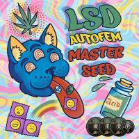 Master-Seed Auto LSD фем.